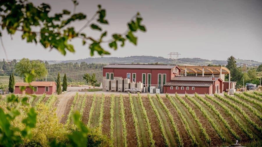 Villa Ilangi Cantina Esterni
